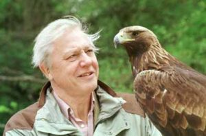 Attenborough1